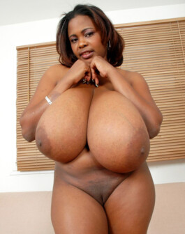 Ebony porm billeder